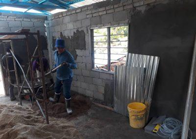 update Jun 2020_durian progress 1