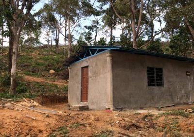 update Jun 2020_durian progress 2