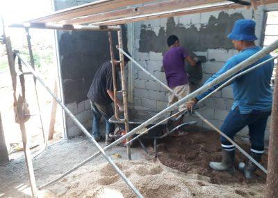 update Jun 2020_durian progress 9